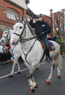 Mounted Gardai