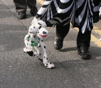 puppy puppet