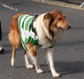 Strand Celtic mascott